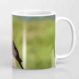 Beautiful Morning Dove Coffee Mug