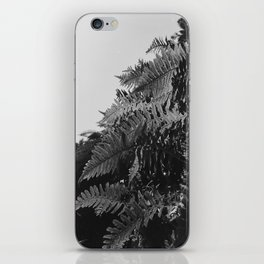 Colorless Ferns iPhone Skin