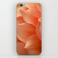 jewish iPhone & iPod Skins featuring Gentle Petals by Brown Eyed Lady