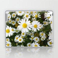 Daisys Laptop & iPad Skin