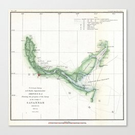 Vintage Map of The Savannah River (1854) Canvas Print