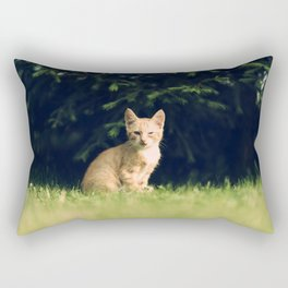 One Eyed Cat Rectangular Pillow