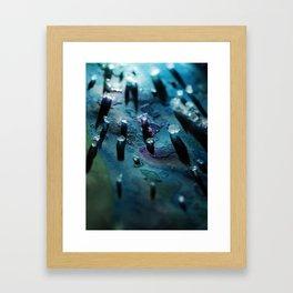 Salt Lake Framed Art Print