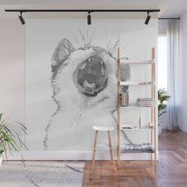 Black and White Sleepy Kitten Wall Mural