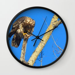 Houdini in Feathers! Wall Clock