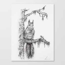 Deep in the wood (Squirrel on a branch) Canvas Print