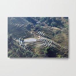 Terraced Rice Fields Rural Landscape, Vietnam Metal Print