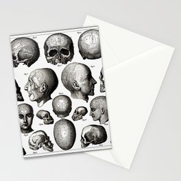Ratio of Lobes Responsible for the Psychological Type of Person (Phrenology) Stationery Cards