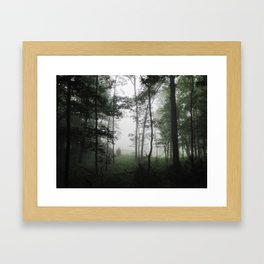 Misty Morning in the Woods of Cades Cove Framed Art Print