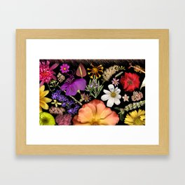 Radiant Symphony Framed Art Print