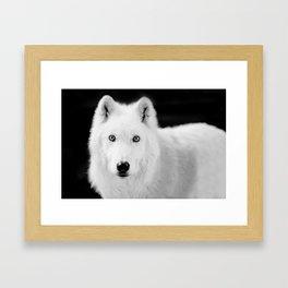 save the wolf Framed Art Print
