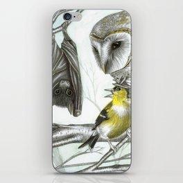The Bat & the Warrior Birds iPhone Skin