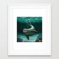 hawaiian Framed Art Prints featuring Hawaiian Monk Seal ~ Acrylic by Amber Marine