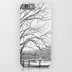 Bare winter Slim Case iPhone 6s