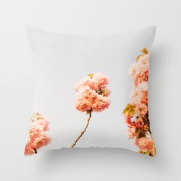 Pillars Of Pastel Pink Flowers Romantic Vintage Florals Throw Pillow