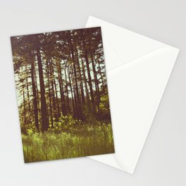 Summer Forest Sunlight - Nature Photography Stationery Cards