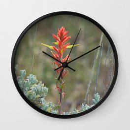Lone Indian Paintbrush Wall Clock