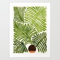 Summer Fern / Simple Modern Watercolor by kristiangallagher