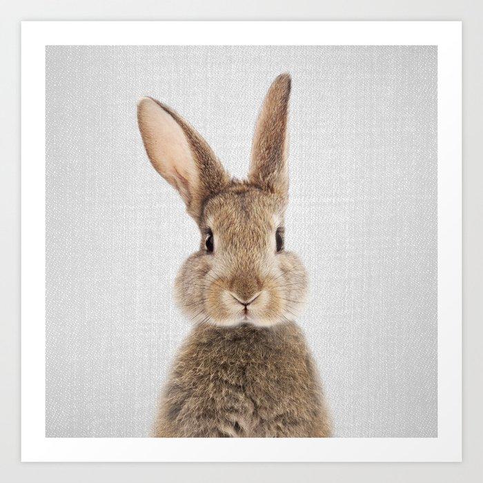Rabbit - Colorful Kunstdrucke