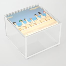 Seagulls with Hats Acrylic Box
