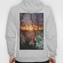 Spring Blossoms Sunset Hoody