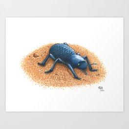 Blue Death Feigning Beetle Art Print