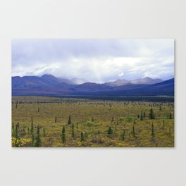 Teklanika River Valley, Denali Canvas Print