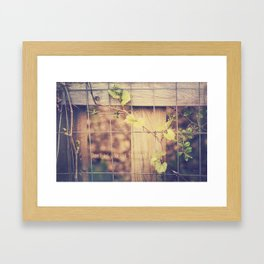 Don't Let Yourself be Caged Framed Art Print