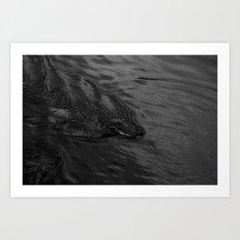 swamp puppy Art Print