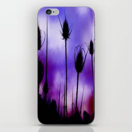 Teasel Skies iPhone Skin