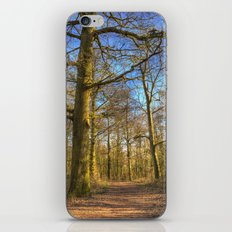 The Forest Path in Springtime iPhone & iPod Skin
