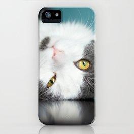 Cute Cat iPhone Case
