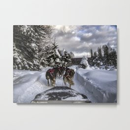 Running With the Dogs Metal Print
