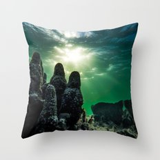 Hand of the Sea Throw Pillow