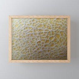 cantaloupe Framed Mini Art Print
