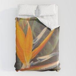 Bird of Paradise 3  Comforters