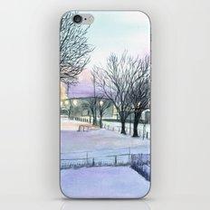 Backyard Ice iPhone & iPod Skin
