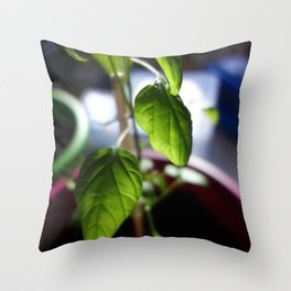 Sunlit Serrano Throw Pillow