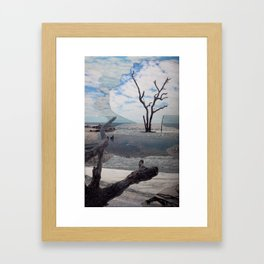 Hunting Island II Framed Art Print