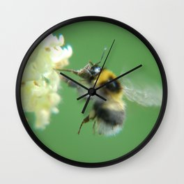 Busy Little Bee - Garden Photography by Fluid Nature Wall Clock