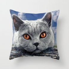 Diesel at the wall ! Throw Pillow