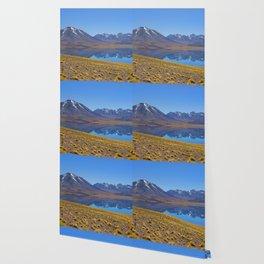 Laguna Miscanti Wallpaper