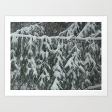Natrual Decor Art Print