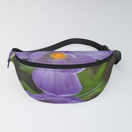 Potted Crocus hoping for spring Fanny Pack