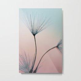 dandelion - sprinkles of love Metal Print