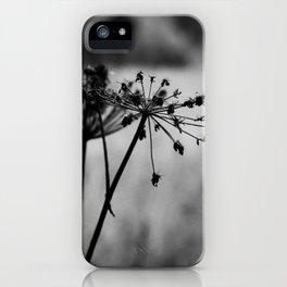 Dark autumn silhouette iPhone Case