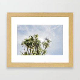 Cornish Palms Framed Art Print