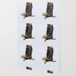 October Eagle II Wallpaper