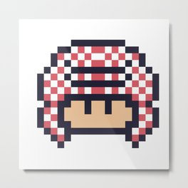 gulfi mushroom Metal Print
