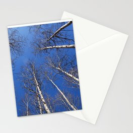 Nature: The trees trunk with  blue sky background. Stationery Cards